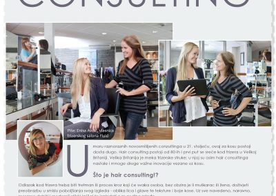 Hair Consulting
