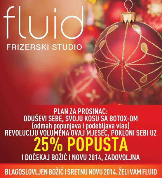 fluid_poster_12_13